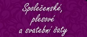 logo-saty
